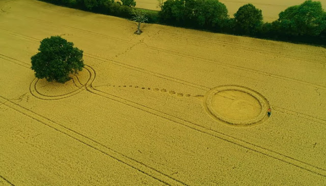 Aparece un extraño Crop Circle en Reino Unido el 7 de agosto 2017