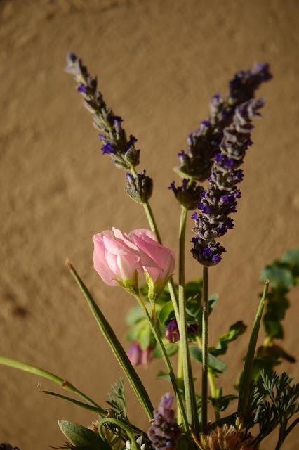 monday vase, small sunny garden, IaVoM, cottage garden, amy myers, desert garden, sweet peas, old spice, lavender