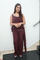 Nikki Galrani in a Brown Shining Sleeveless Gown at Nakshatram music launch ~  Exclusive 101.JPG