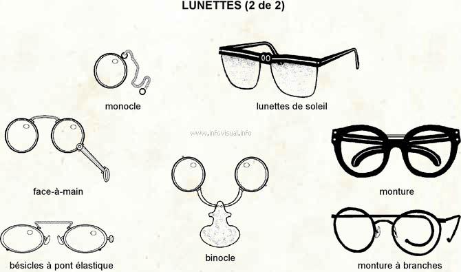 le rhinoceros regarde la lune : les lunettes : tentative d
