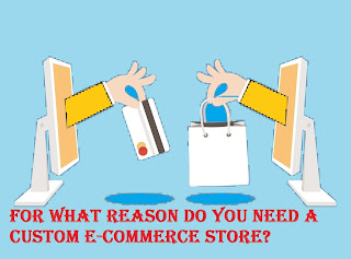 For what reason Do You Need a Custom E-Commerce Store?