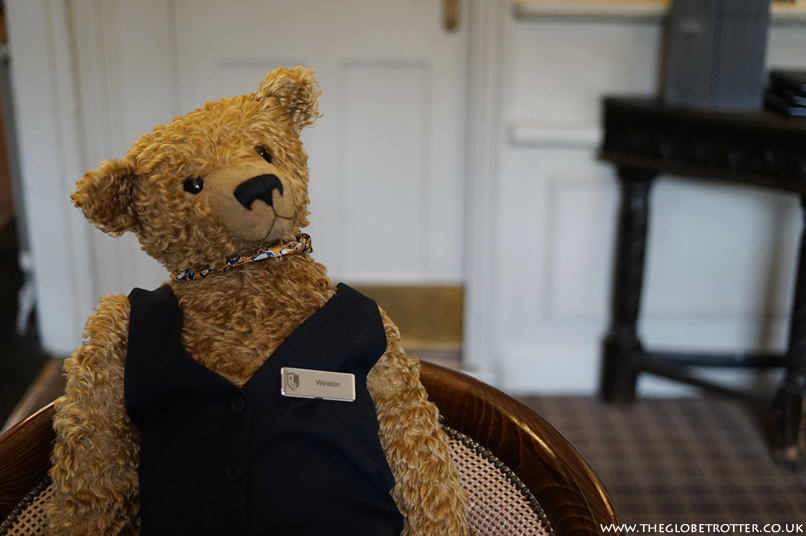 Winston the Bear relaxing in the bar at the Macdonald Bear Hotel