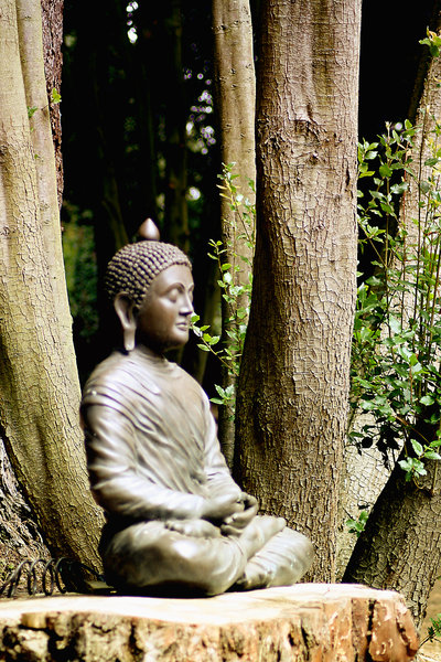 Meditation in the Woods by Gramps, RGBStock.com