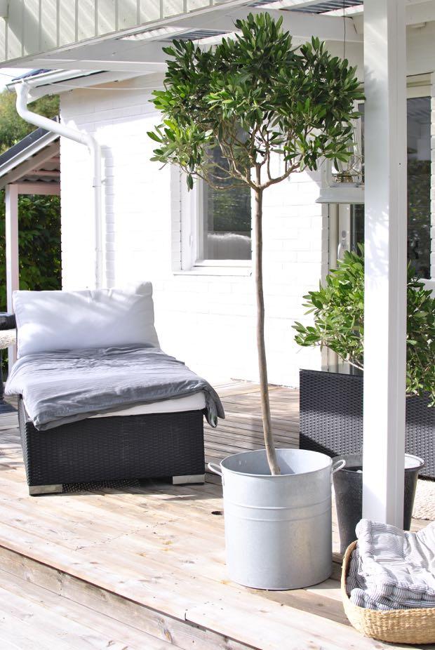 lounge schäslong altan terrass olivträd hannashantverk.blogspot.se