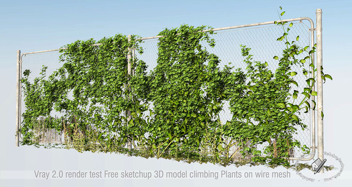 Sketchup texture sketchup 3d model vegetation for Free sketchup textures