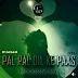 Pal Pal Dil Ke Paas ( Sanam ) Progressive Mix - DJ GRV