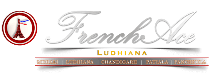 FrenchAce: The Best French Language Institute in Ludhiana, Learn French in Ludhiana, French Classes