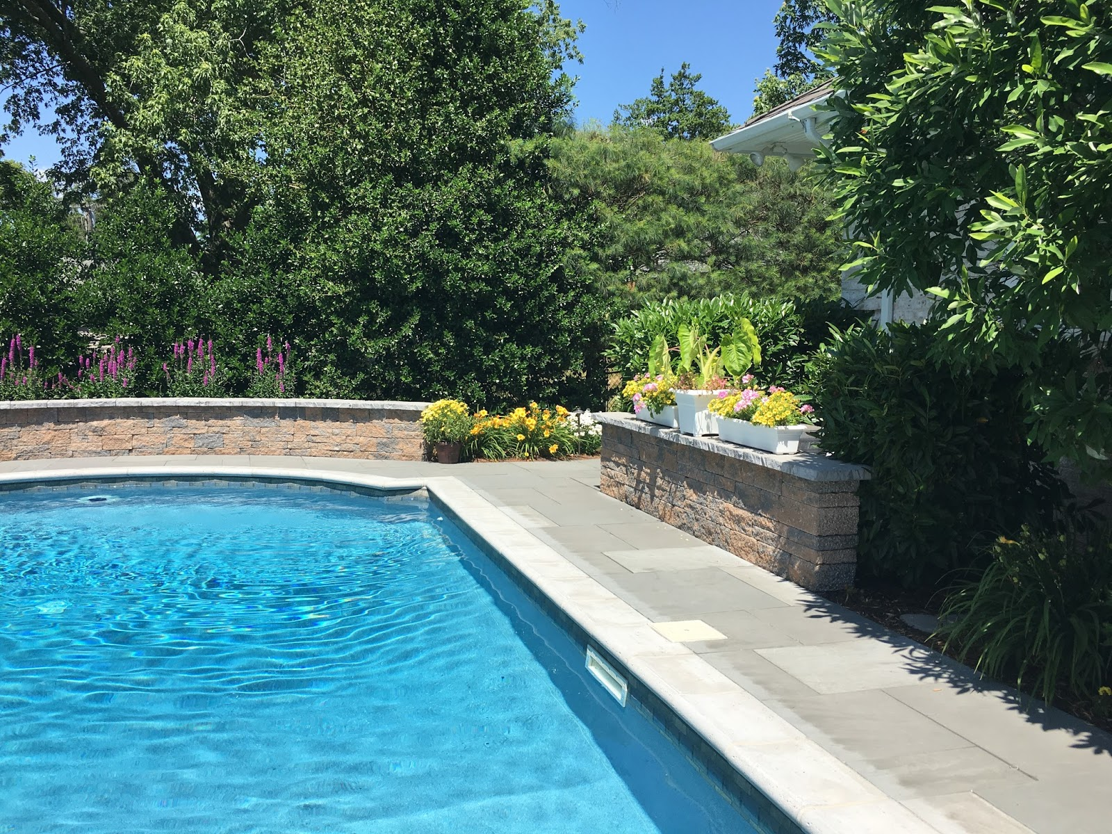 Classic swimming pool with pavers