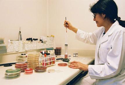 secciones que conforman un laboratorio clinico