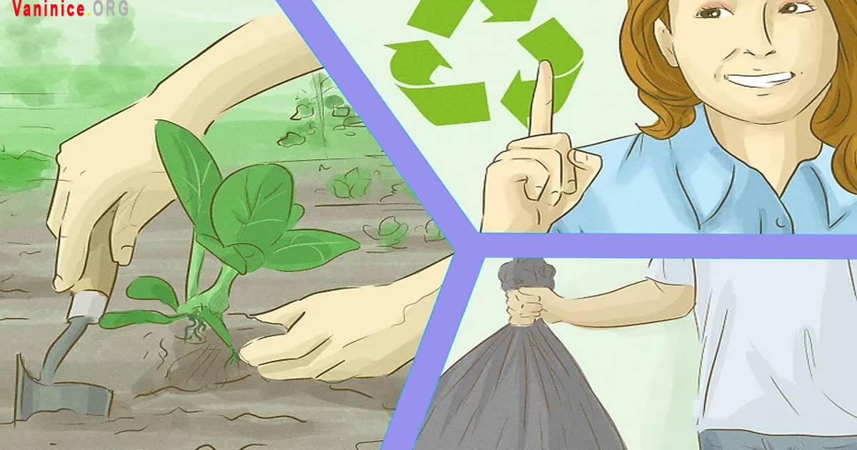 cách bảo vệ môi trường không bị ô nhiễm