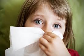 Mimisan atau yang lebih dikenal dengan hidung berdarah ini merupakan salah satu keadaan d  Penyebab Dan Cara Mengobati Mimisan Secara Alami