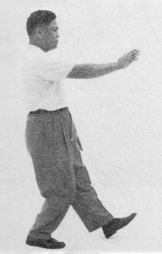 Tai Chi Chuan (Square Form) 10. The Seven Stars Style (Left)