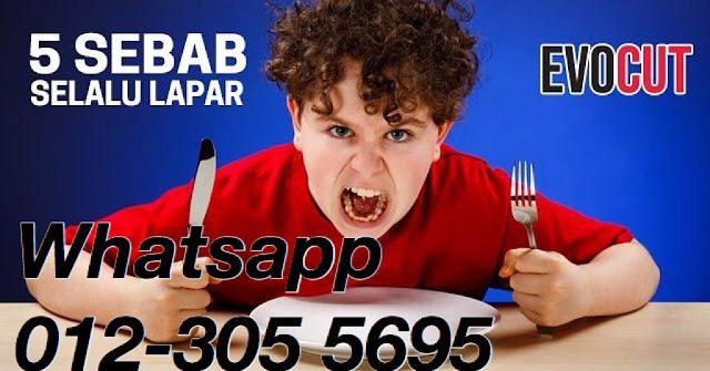 WhatsApp%2BImage%2B2019-05-03%2Bat%2B3.41.06%2BPM.jpeg