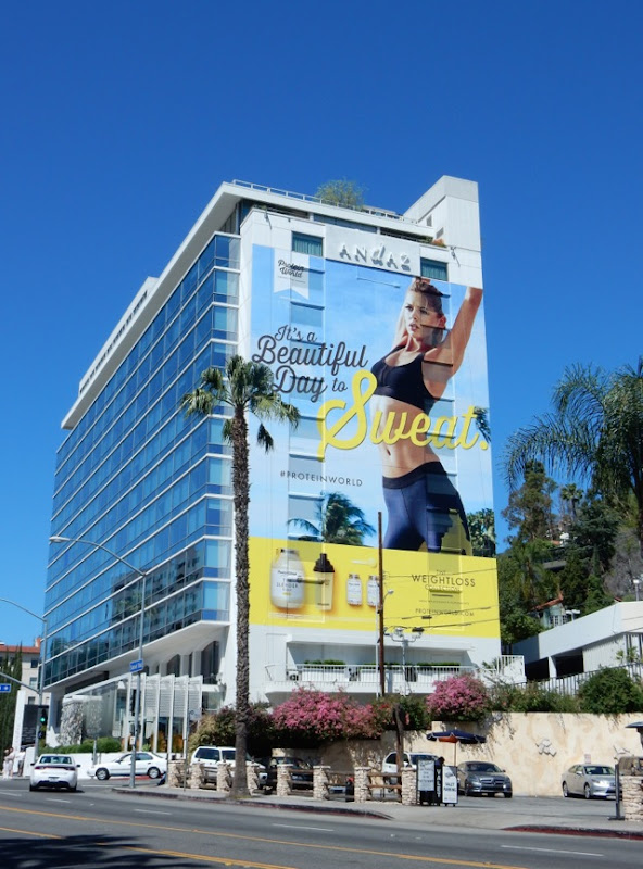Giant Protein World Weightloss Collection billboard
