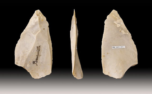 Neanderthals did not rely on brute force for their daily manual tasks