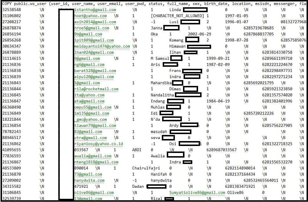 data akun tokopedia yang berhasil diretas hacker