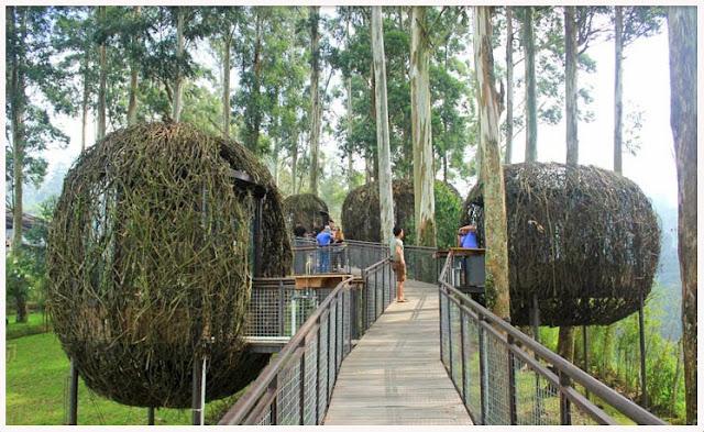 paket-tour-bandung-murah-dusun-bambu-lembang