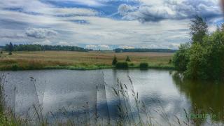 Blick auf Teich bei Horny Blatna