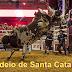 Rodeio em Santa Catarina