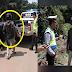 Saat Berpatroli, Polisi Menghentikan Pengendara Bonceng 3, Saat Dihentikan Ternyata Bawa Mayat
