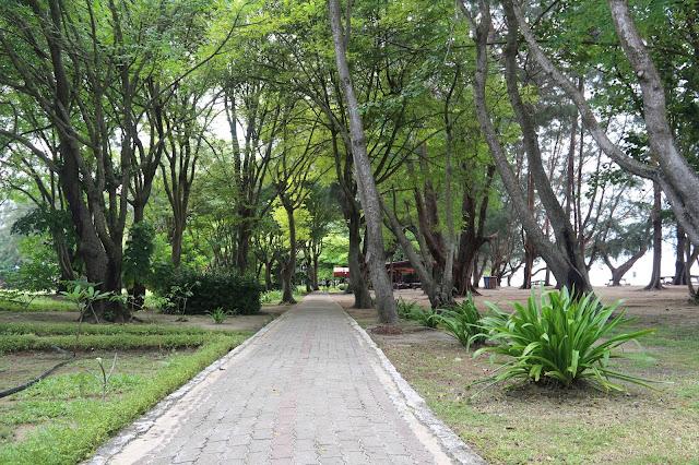 Jalanan rapi di Manukan Island denga pepohonan yang rindang