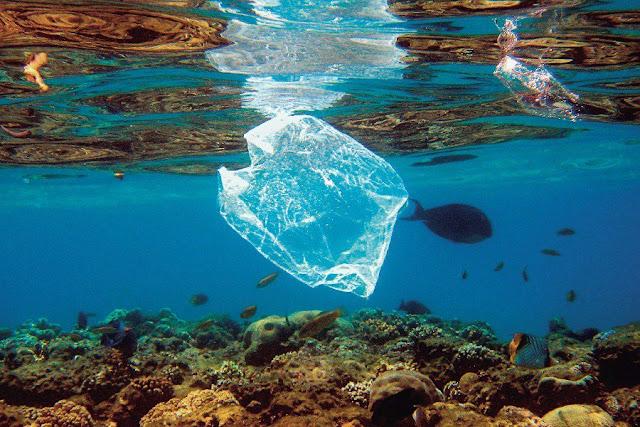 Τα πλαστικά σαρώνουν τις ελληνικές θάλασσες