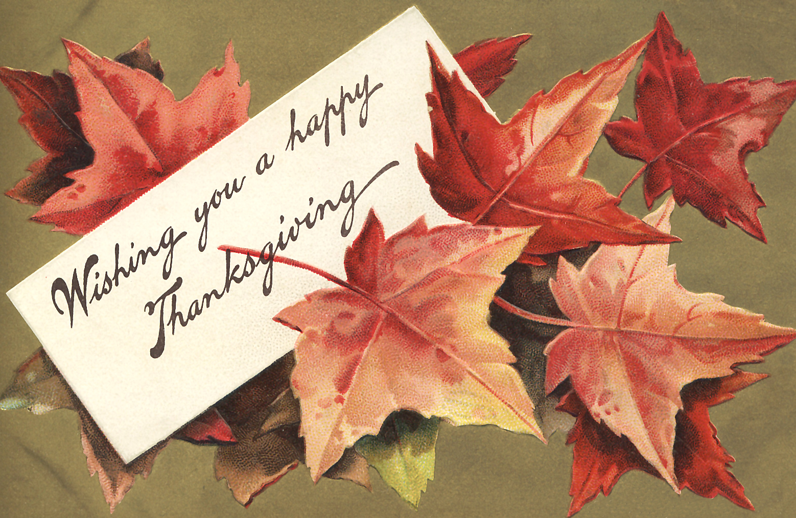 Thanksgiving cards hope we are able to serve our viewers with latest collection of cards and greetings you can even customize by adding your personal messages along with a kristyandbryce Choice Image