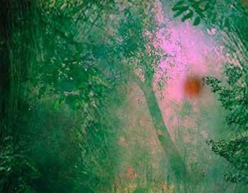 Juegos de Escape - Big Magical Forest Escape