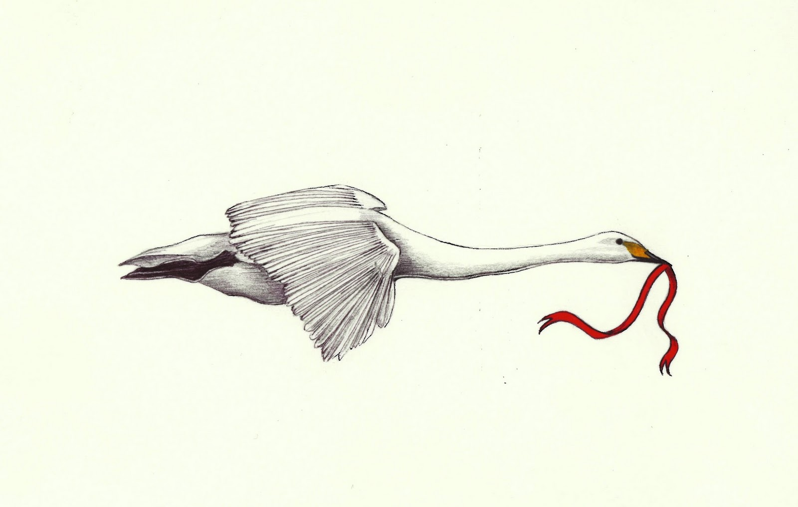 Aninimal Book: A Drawing a Day for a Year: October 13, 2011 - Flying Swan