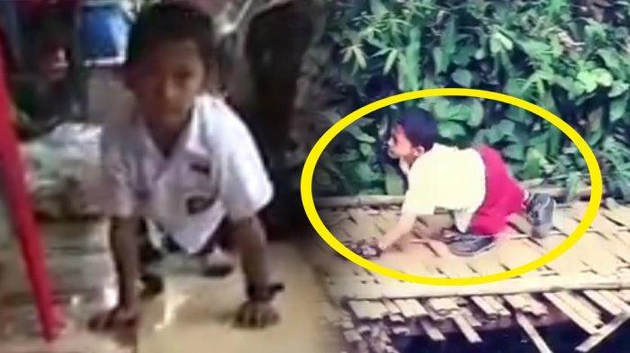 Hebat, Bocah Ini Tiap Hari Merangkak 3 Kilometer ke Sekolah