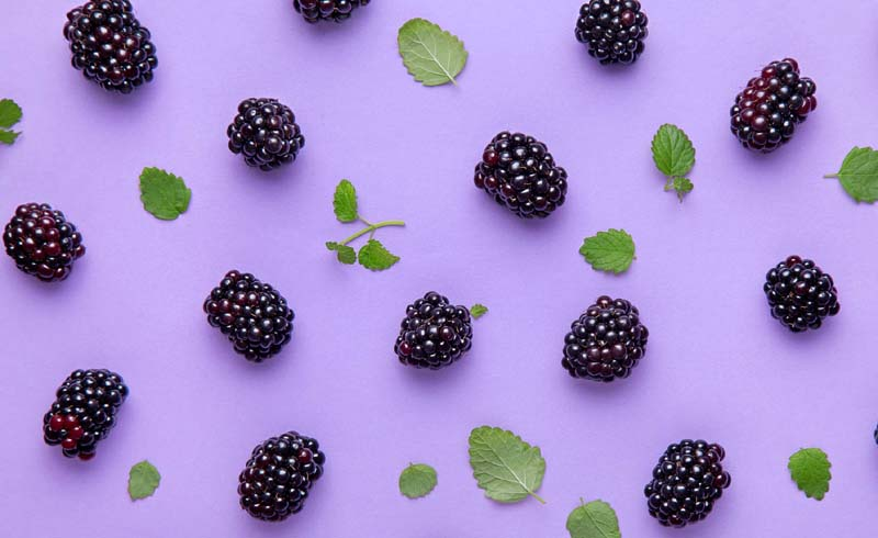 healthy eating, blackberries