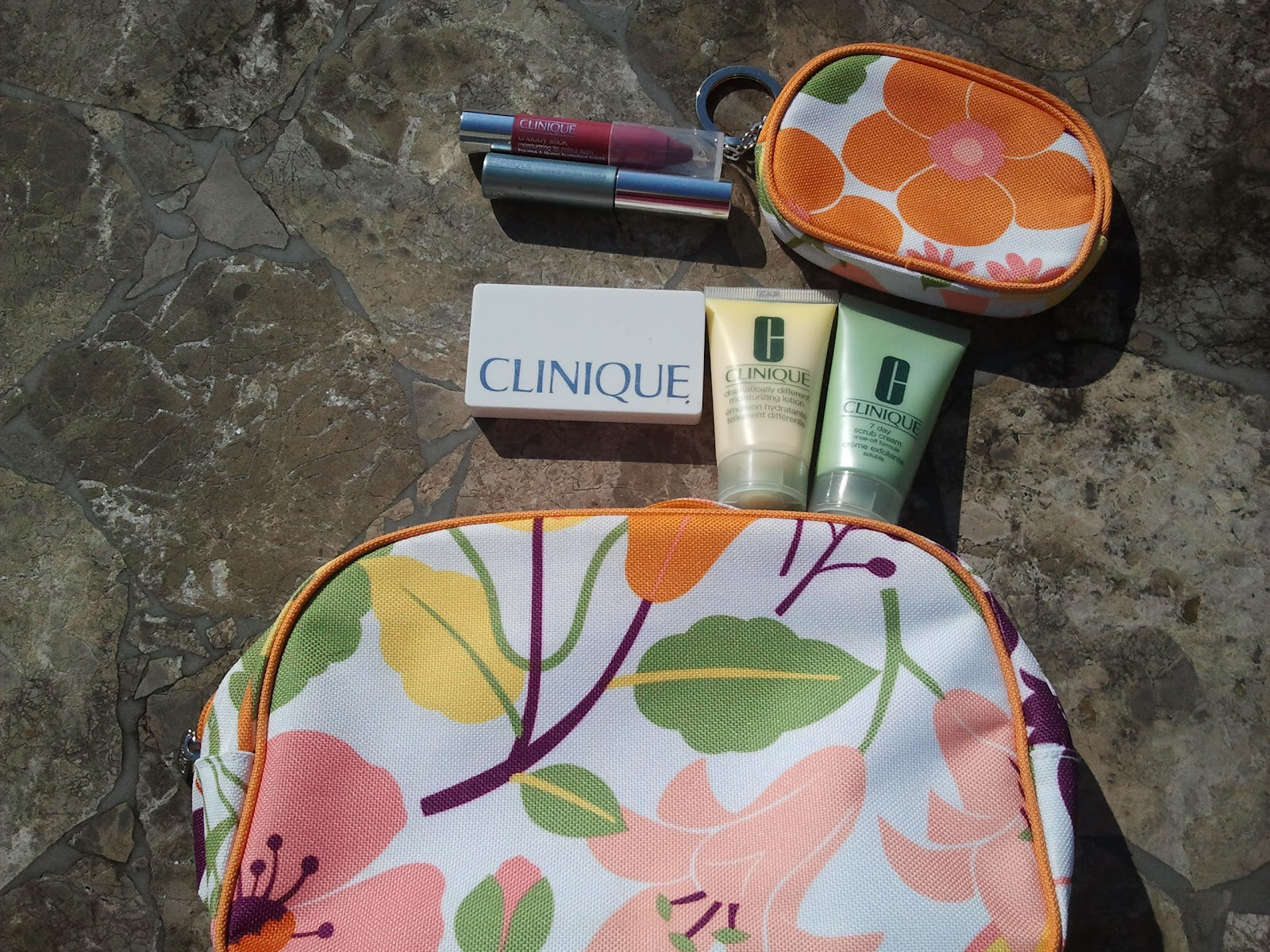 Clinique Travel Bag