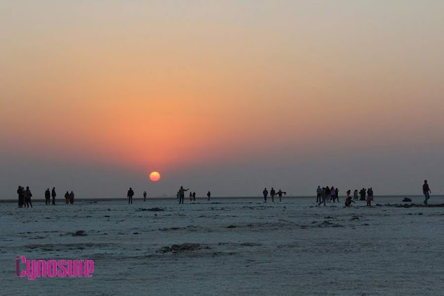 What To Do During Rann Utsav, Detailed Itinerary For A Day At The White Desert