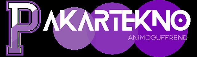 www.pakartekno.com