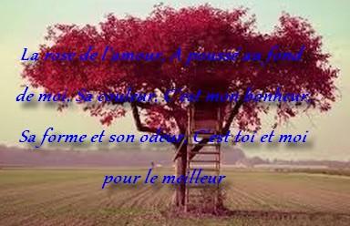 Message Et Texto De Tendresse Messages Et Textes Damour