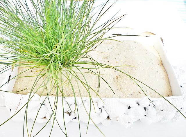 Muschellandschaft - Basteln mit Muscheln - DIY vonKarin