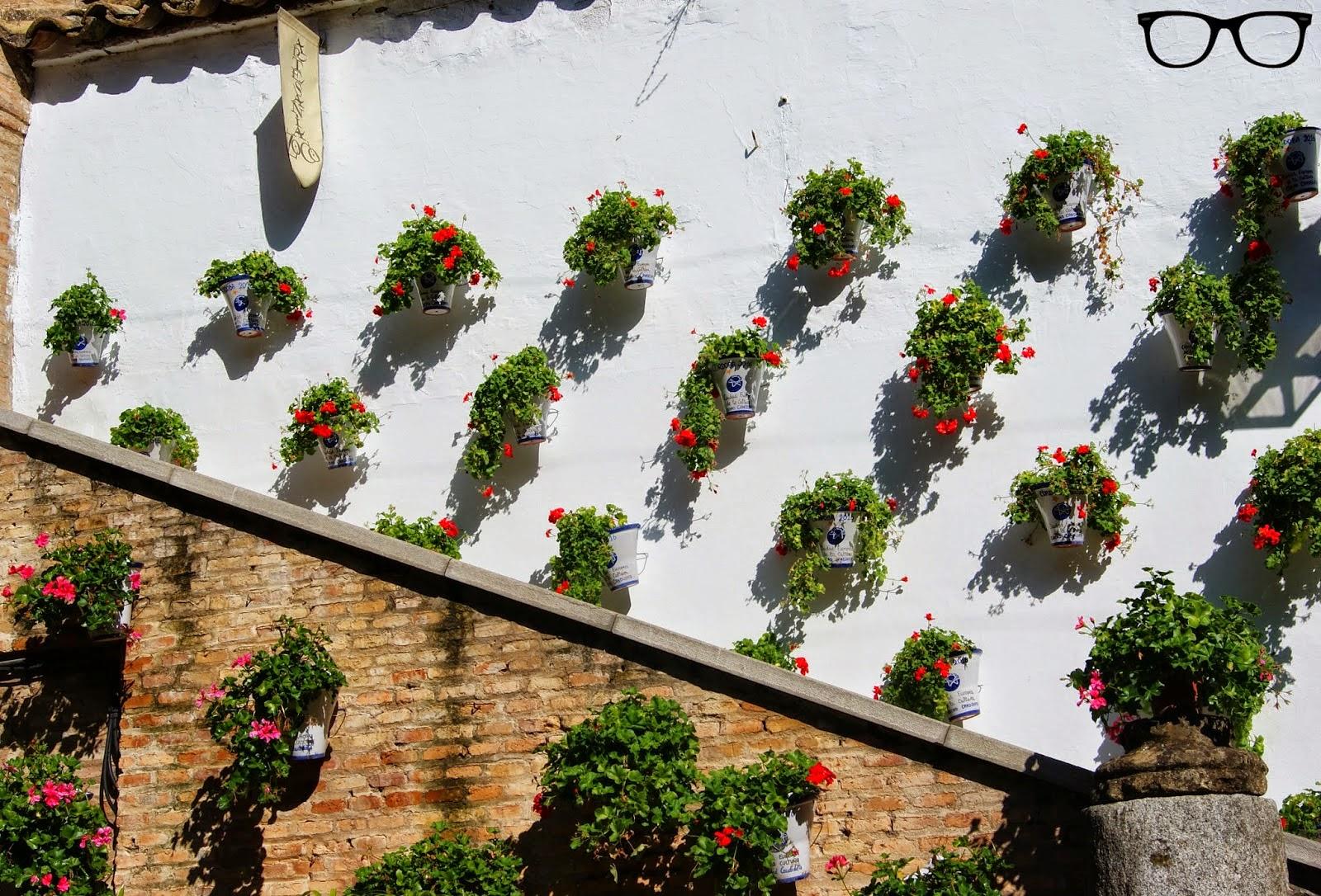 Flores Zoco de Córdoba