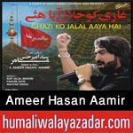 http://www.humaliwalayazadar.com/2015/07/ameer-hasan-aamir-nohay-2016.html