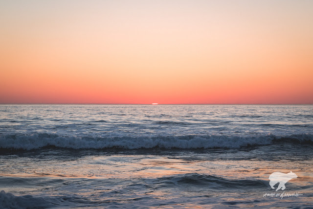 Gotta love sunsets over the Pacific. Venice Beach, CA.