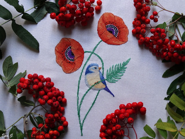 Blue bird on the poppies #2