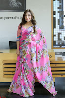 Angela Krislinzki Rogue Movie Fame Telugu Actress in Saree Backless Choli 095.JPG