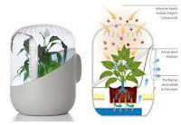 Teknologi yang terinspirasi dari struktur jaringan tumbuhan - Pemurni udara
