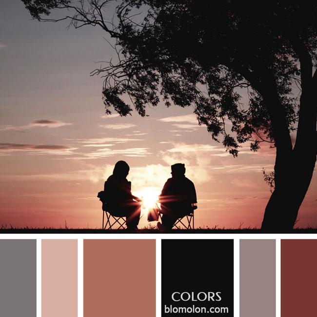 variedad_en_color_paletas_de_colores_20