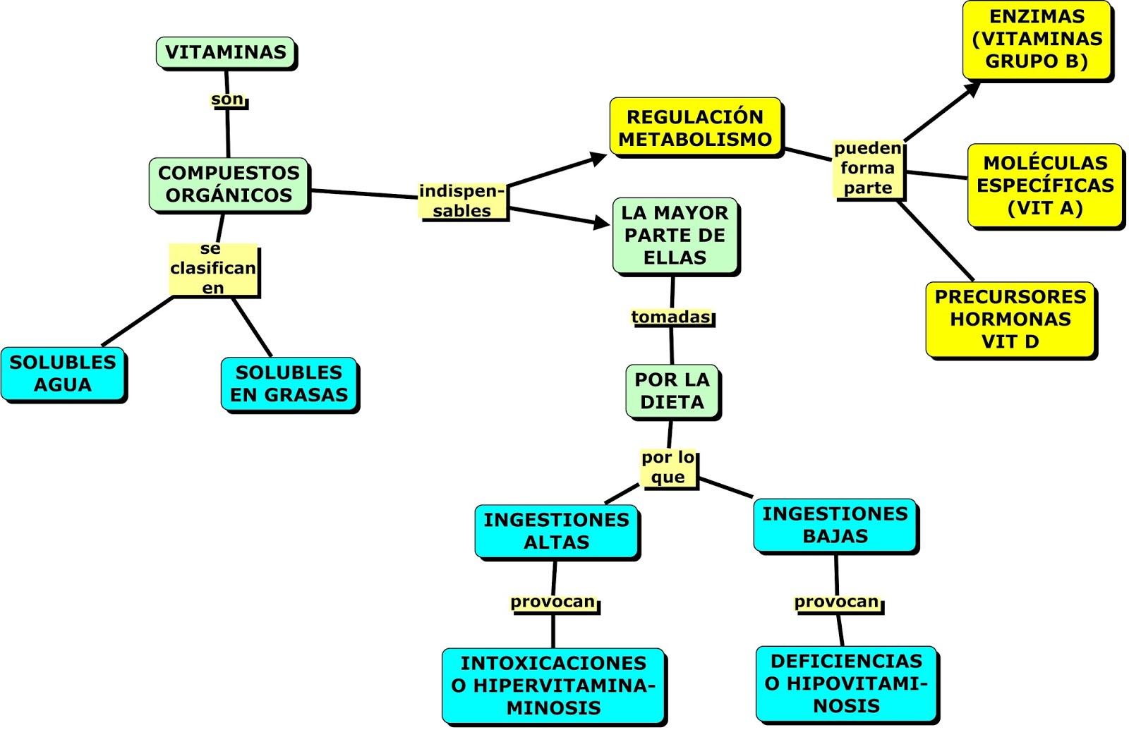 Cure esquema metabolismo celular con la naturaleza