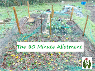 The 80 Minute Allotment Layout Green Fingered Blog