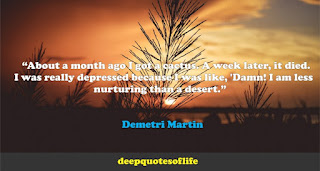 """About a month ago I got a cactus. A week later, it died. I was really depressed because I was like, 'Damn! I am less nurturing than a desert.""  ― Demetri Martin"