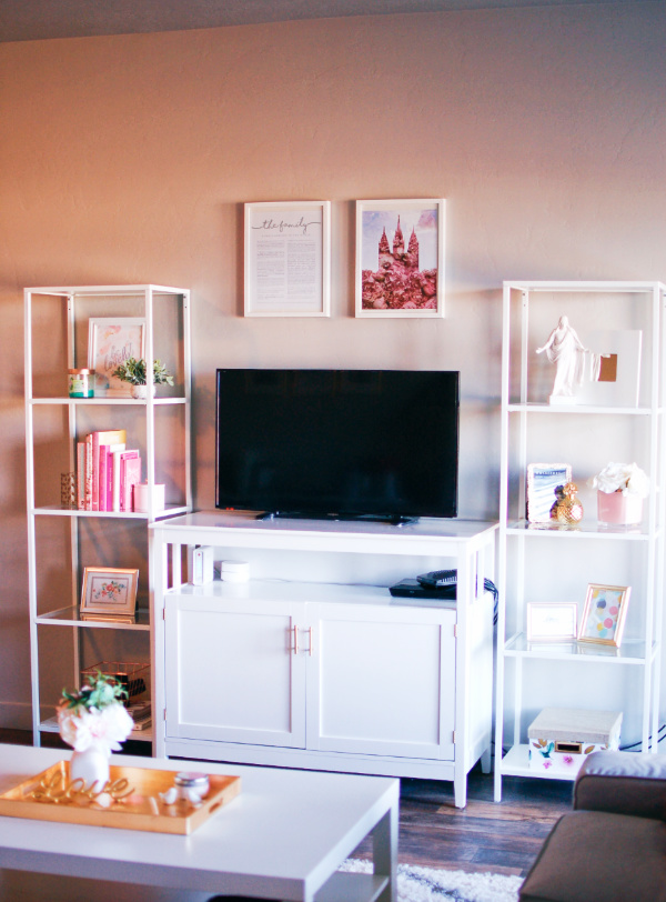 TV Stand Ideas and Decor
