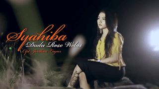 Lirik Lagu Dudu Roso Welas - Syahiba Saufa