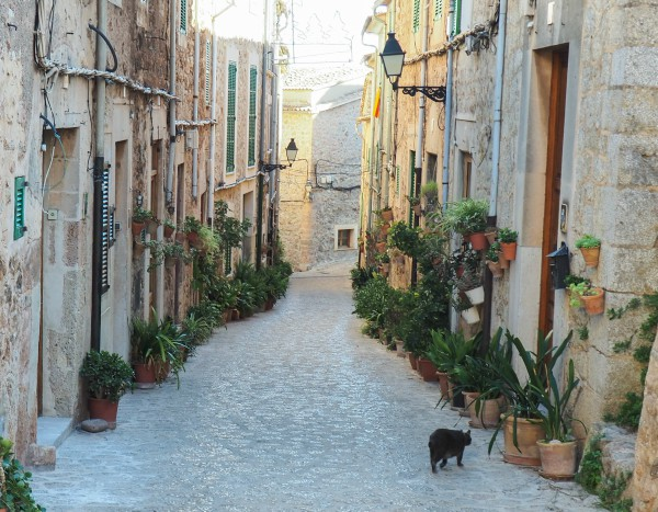 valldemossa cats
