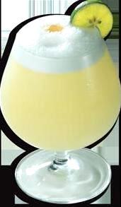 Foto de una copa de Pisco Sour adornado de un limón